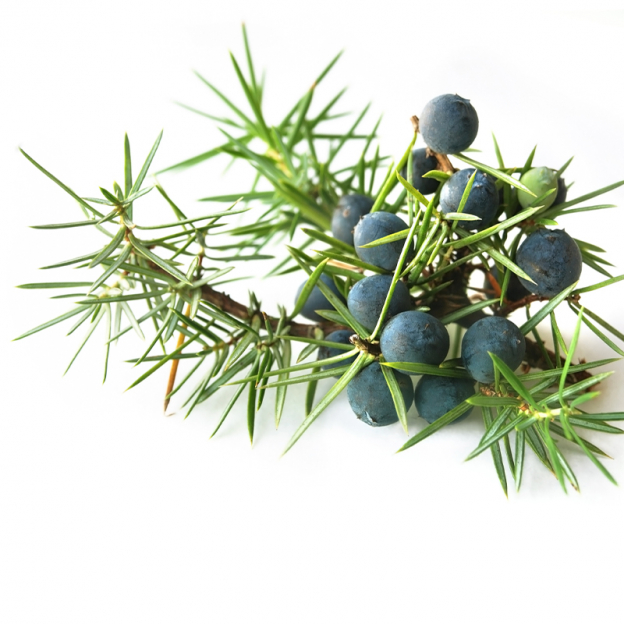 Jeneverbes, etherische olie, biologisch